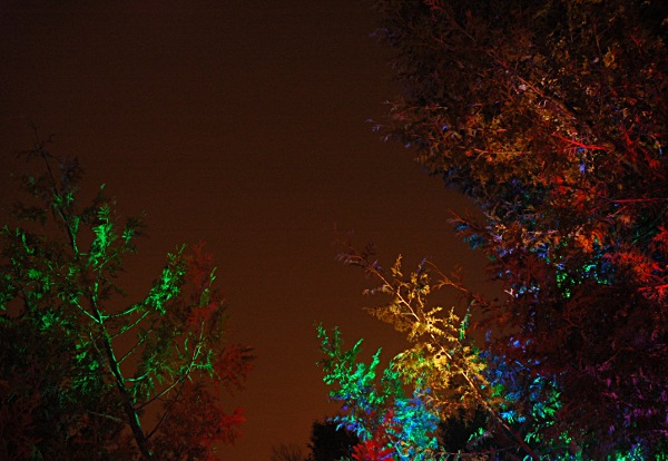 Image illuminated by multicoloured LEDs. (c) Kyle Clements, 2010. cc-by-nc-sa